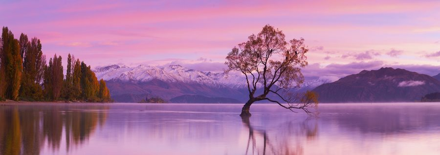 Serenity, Lake Wanaka, New Zealand. A Limited Edition Fine Art Landscape Photograph by Richard Hume