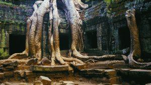 Angkor Wonder, Angkor Wat, Cambodia. A Limited Edition Fine Art Landscape Photograph by Richard Hume