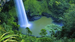 Bridal Veil Falls, Waikato, New Zealand. A Limited Edition Fine Art Landscape Photograph by Richard Hume
