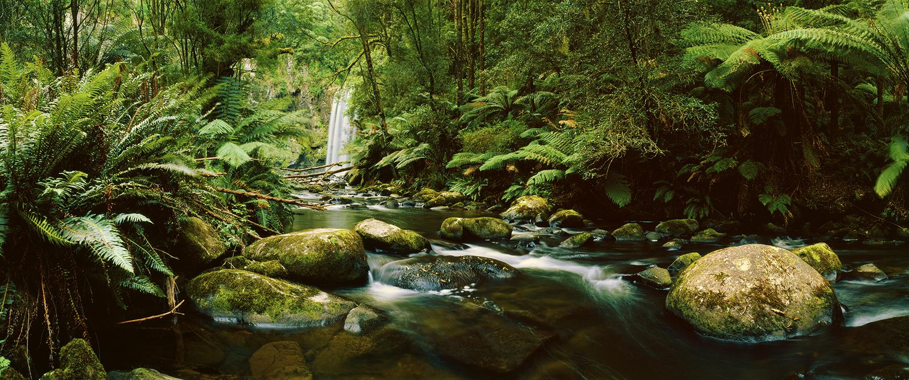 Hopetoun Falls, Victoria, Australia. A Limited Edition Fine Art Landscape Photograph by Richard Hume