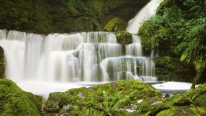 Lower McLean Falls, Catlins Forest Park, New Zealand. A Limited Edition Fine Art Landscape Photograph by Richard Hume