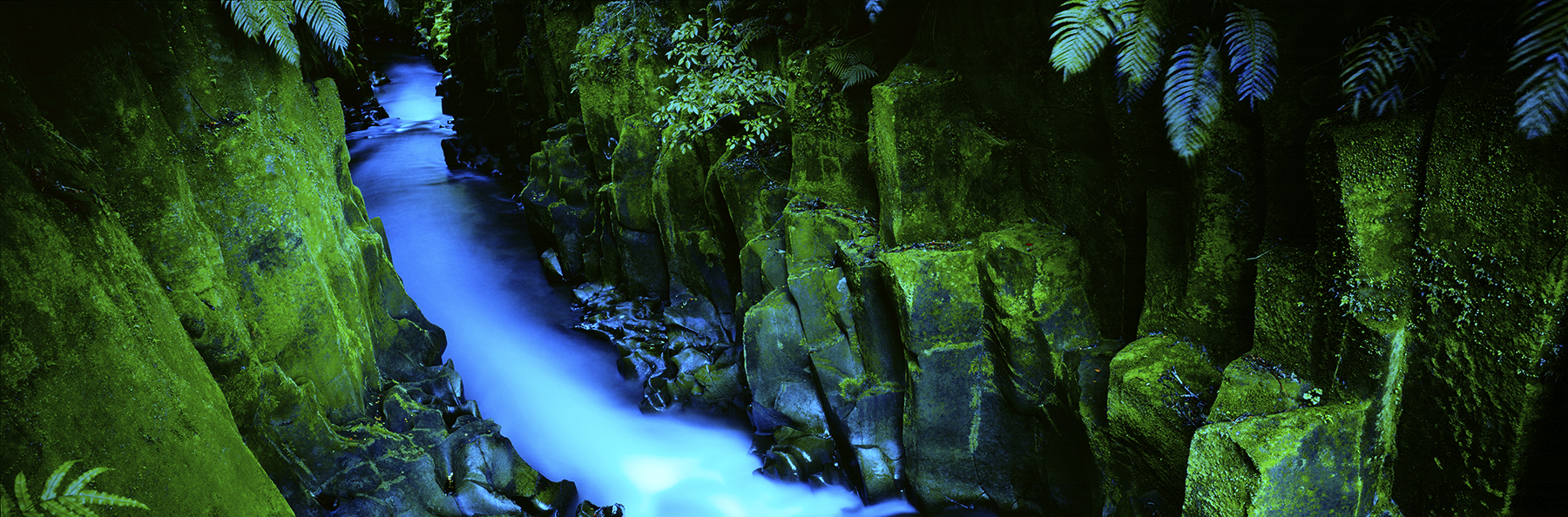 Te Whaiti Nui a Toi Canyon, Wirinaki Forest, New Zealand. A Limited Edition Fine Art Landscape Photograph by Richard Hume
