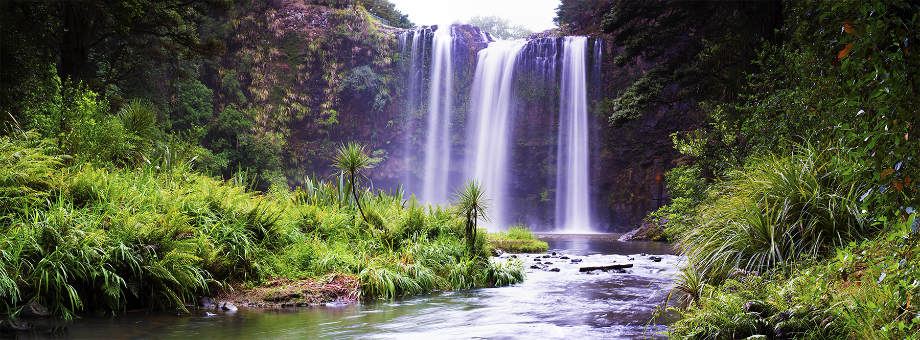 Whangarei Falls, Northland, New Zealand. A Limited Edition Fine Art Landscape Photograph by Richard Hume