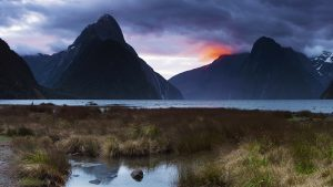 Milford Sound, New Zealand. A Limited Edition Fine Art Landscape Photograph by Richard Hume