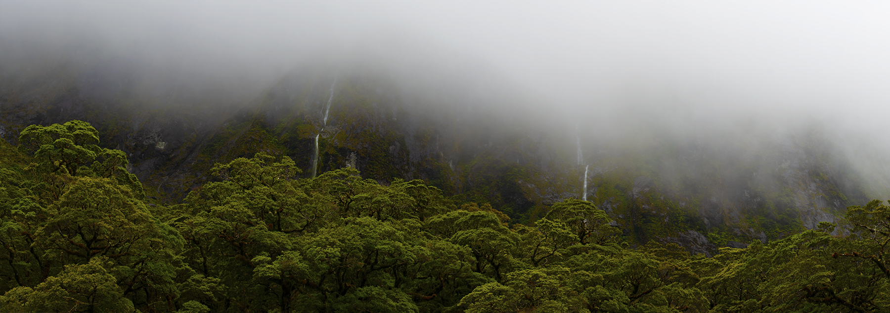 Misty Moods, Fiordland. A Limited Edition Fine Art Landscape Photograph by Richard Hume