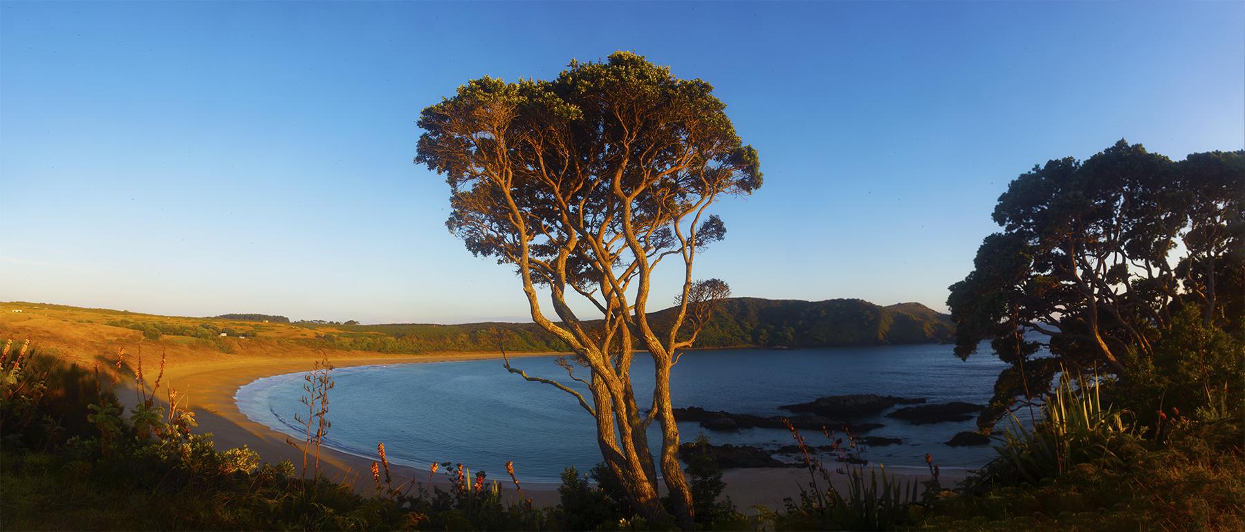 Matai Bay, Northland, New Zealand